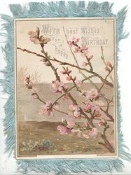 WITH BEST WISHES FOR A HAPPY BIRTHDAY above pink apple blossom