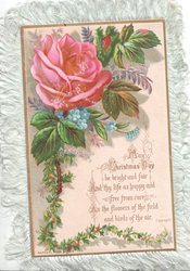 MAY CHRISTMAS DAY BE BRIGHT AND FAIR pink rose & forget-me-nots