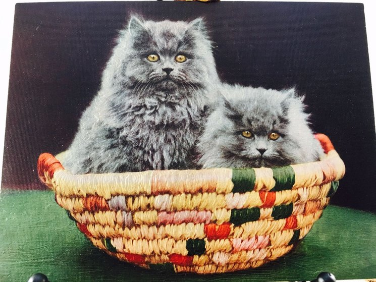 A BASKET OF MISCHIEF title on reverse, two grey cats in colorful wicker basket