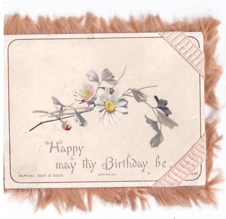 HAPPY MAY THY BIRTHDAY BE daisies, ribbon over right side corners