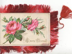 A MERRY CHRISTMAS pink roses