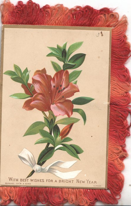 WITH BEST WISHES FOR A BRIGHT NEW YEAR, red lily