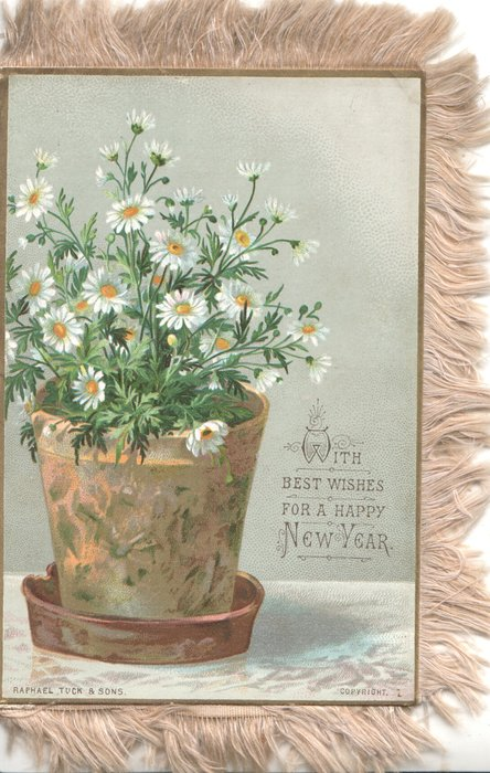 WITH BEST WISHES FOR A HAPPY NEW YEAR pot of yellow centered white daisies