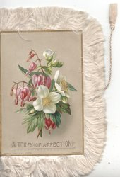 A TOKEN OF AFFECTION below pink fuchsia & white anemones