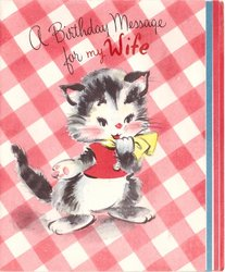 A BIRTHDAY MESSAGE FOR MY WIFE dressed cat in front of red checkered background