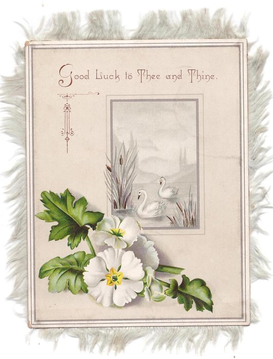 GOOD LUCK TO THEE AND THINE inset swans with white flowers below