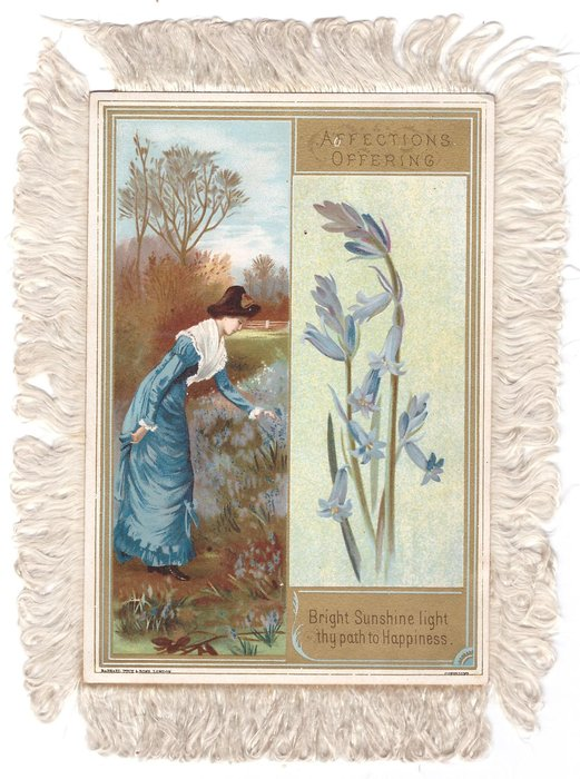 AFFECTIONS OFFERING woman leans to touch flowers left, close view bluebells right