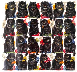 BLACK CATS FOR LUCK