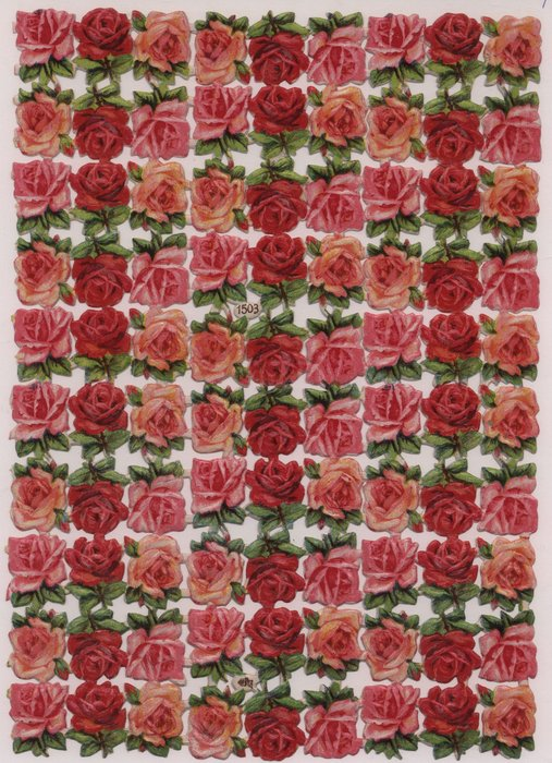single red or pink roses