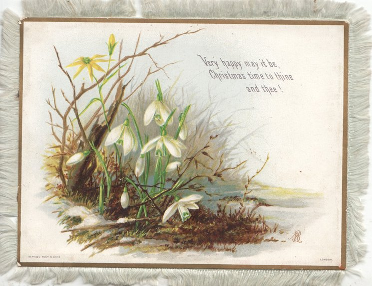 VERY HAPPY MAY IT BE, CHRISTMAS TIME TO THINE & THEE! snowdrops beside lake