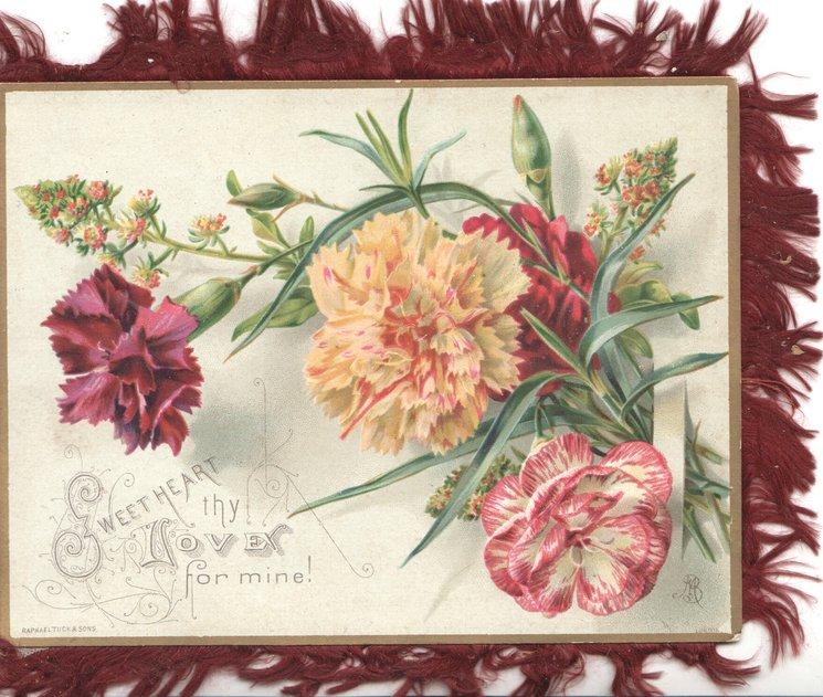 SWEETHEART THY LOVE FOR MINE! carnations & mignonette
