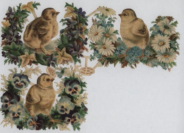 chicks with flowers