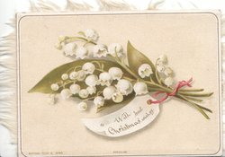 WITH BEST CHRISTMAS WISHES on label attached to bunch of lilies-of-the-valley