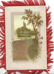 MANY HAPPY RETURNS OF THE DAY below verse, watery rural inset, ferns, grasses & trees