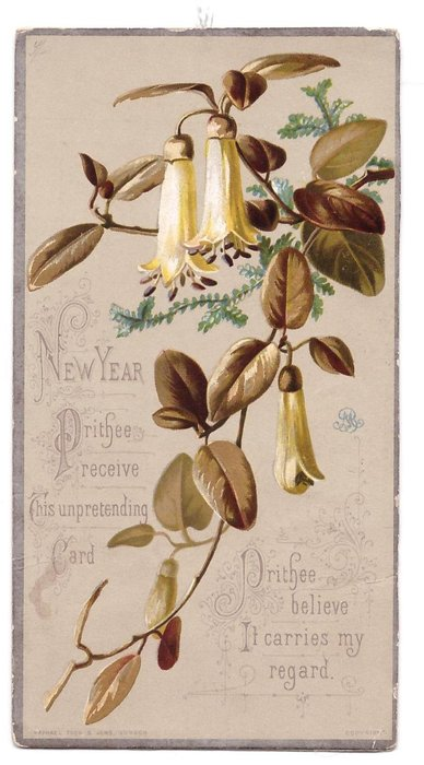 CHRISTMAS THE PEACE OF THE SPIRIT THAT FLIES NOT AWAY BE WITH THEE AND ROUND THEE AN,  O'ER THEE TODAY orange trumpet flowers
