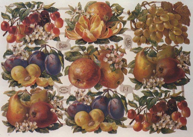 fruit in groups