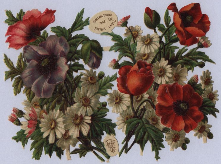 floral bouquets of poppies and daisies