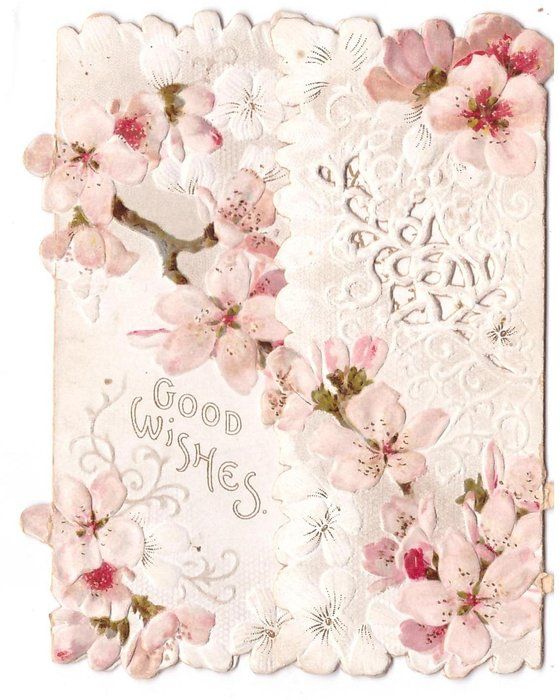 GOOD WISHES below diagonal spray of pink cherry blossoms, perforated design right