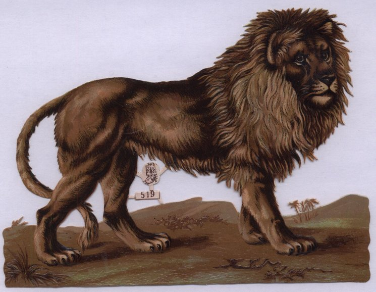 lion with large mane standing facing right