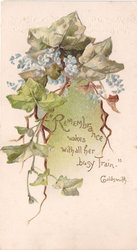REMEMBRANCE WAKES WITH ALL HER BUSY TRAIN -- GOLDSMITH ivy & forget-me-nots
