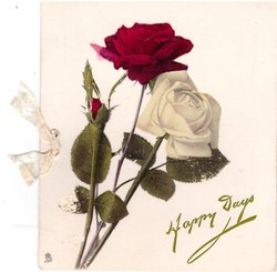 HAPPY DAYS in green, white & red rose & bud