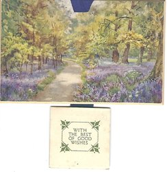 BLUEBELL WALK (KEW GARDENS) title on back