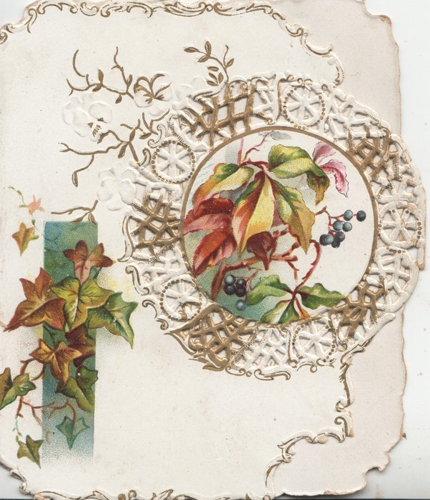 no front title, ivy below left over green tag & narrow leaves & blue berries in perforated circlet
