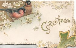 GREETINGS (glittered) two bull-finches perch on white stylised blossom tree top left, stylised leaf below right