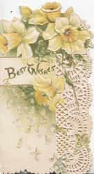 BEST WISHES in gilt on cream inset below daffodils, white perforated design right, embossed
