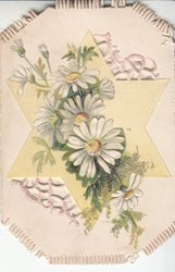 no front title, white daisies with yellow  centres in front of yellow star, perforated design