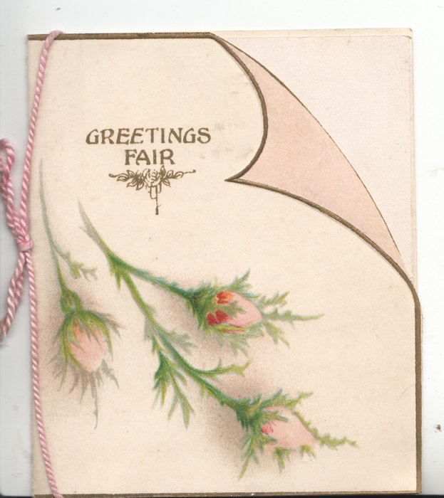 GREETINGS FAIR  above pink moss rose buds on front flap