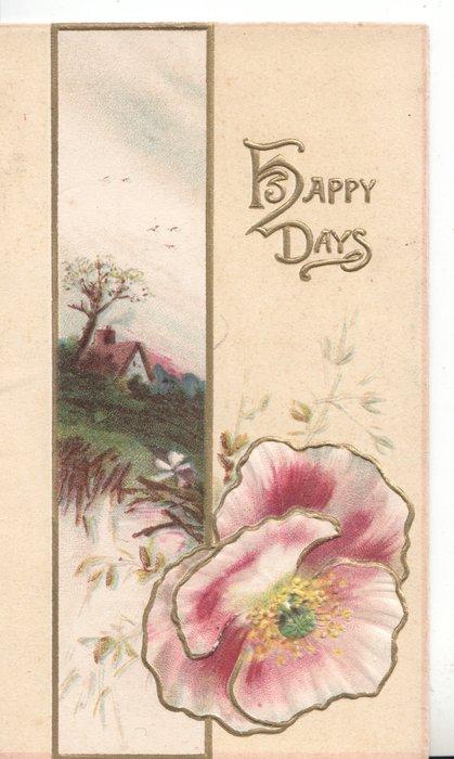 HAPPY DAYS in gilt upper right, rural inset left purple & white & pink poppy below
