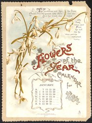 FLOWERS OF THE YEAR CALENDAR FOR 1894