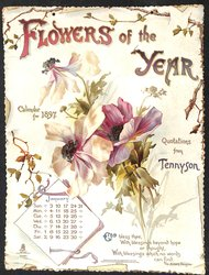FLOWERS OF THE YEAR CALENDAR FOR 1897
