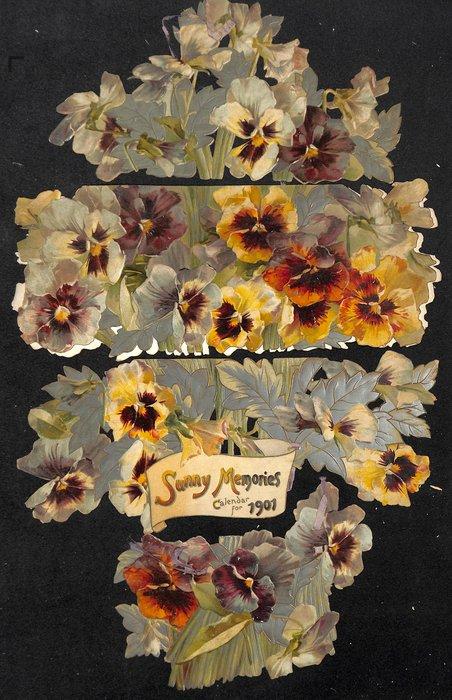 THE SUNNY MEMORIES CALENDAR FOR 1901
