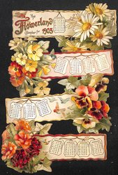 THE FLOWERLAND CALENDAR FOR 1903