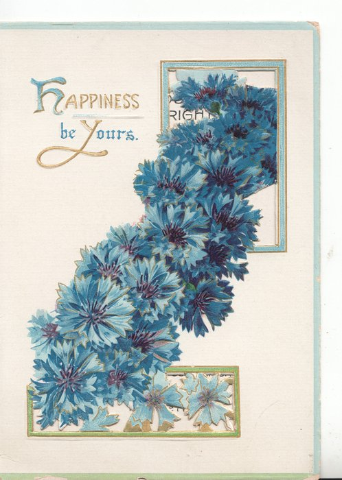 HAPPINESS BE YOURS (H & Y illuminated) cascade of blue cornflowers from one perforated window to the other
