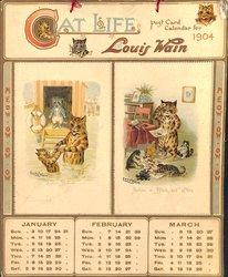 CAT LIFE POST CARD CALENDAR FOR 1904