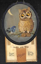 MERRY AND WISE owl looks down on bluebird