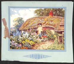 BLOTTER thatched cottage and front garden