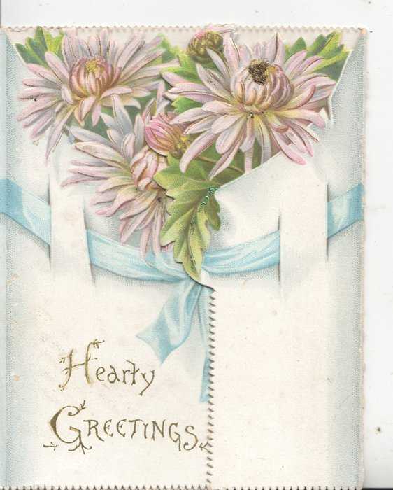 HEARTY GREETINGS in gilt below pink chrysanthemums above blue ribbon, white front, back buds