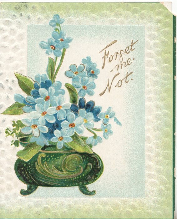 FORGET-ME-NOT in gilt, blue forget-me-nots in green pot, light green marginal background