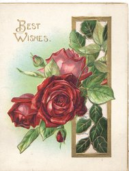 BEST WISHES in gilt above red roses coming through gilt bordered window, from right, gilt margins, pale green background