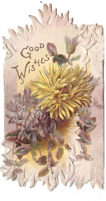 GOOD WISHES above left over yellow & purple chrysanthemums