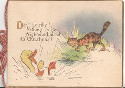 DON'T BE SILLY! NOTHING TO BE FRIGHTENED ABOUT ITS CHRISTMAS!  cat observes duck splashing in pond