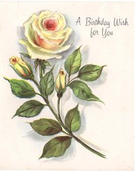 A BIRTHDAY WISH FOR YOU yellow rose & two buds