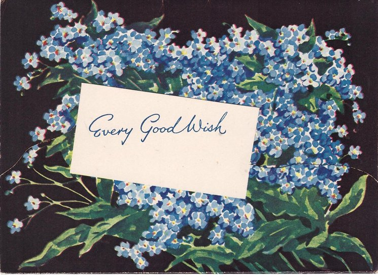 EVERY GOOD WISH on white inset, blue forget-me-nots on black background