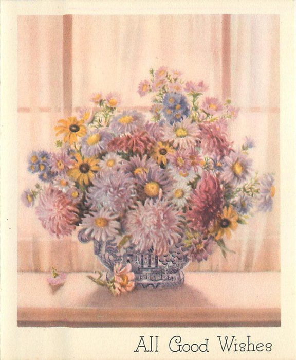 ALL GOOD WISHES chrysanthemums & asters, pink curtain behind