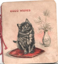 GOOD WISHES top left over black cat sitting on red cushion beside vase of stylised flowers