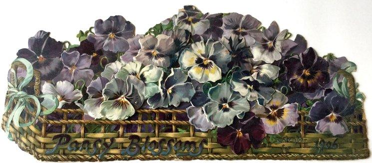 PANSY BLOSSOMS CALENDAR 1906